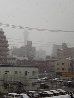 大阪市内も大雪