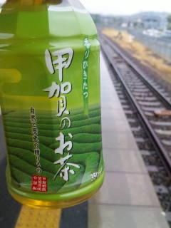 甲賀のお茶