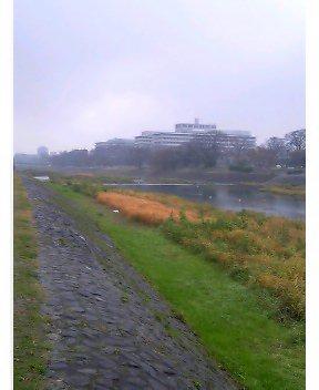 今日はチョイト冷える京都
