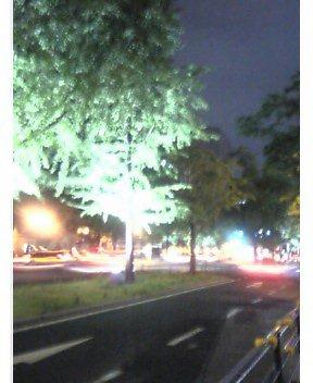 夜と光と緑