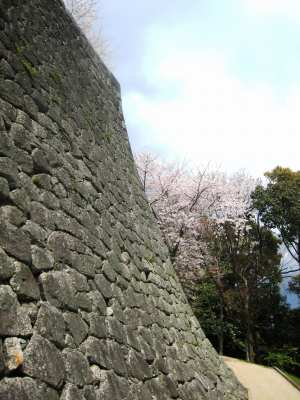 Joheki_matsuyamajoimg_1808