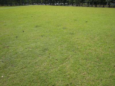Narakouen915
