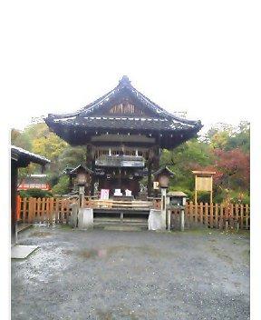 雨中の神泉苑