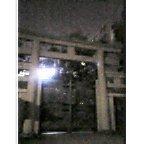 街中の神社の夜景