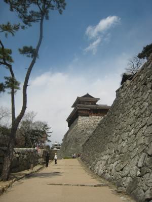Joheki_matsuyamajoimg_1745