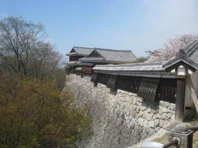 Matsuyamajoimg_1752