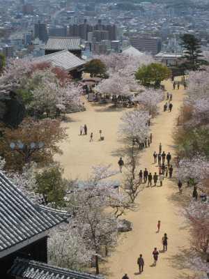 Tenshu_matsuyamajoimg_1789